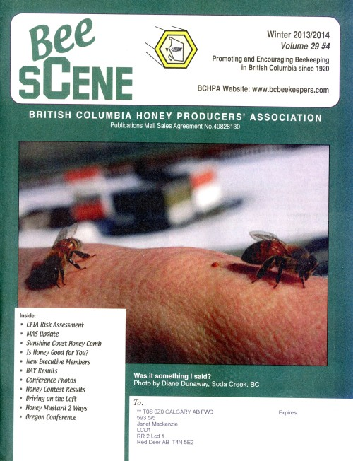 BeeSCene cover Winter 13:14