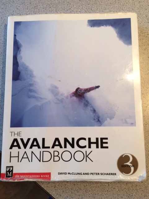 Avalanche 1 IMG_1128