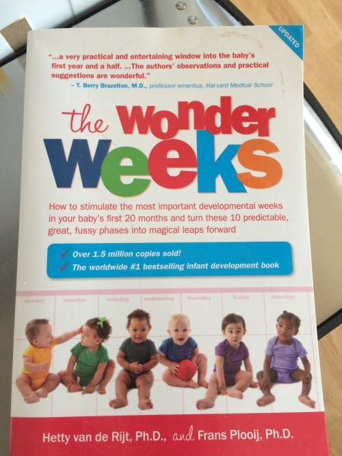Wonder Weeks IMG_1116
